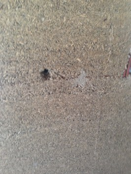 Mistake #1: Holes left from formwork bolts