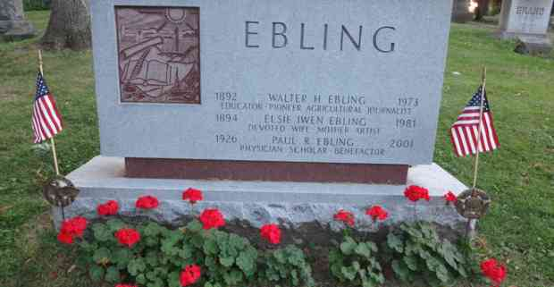 Ebling grave with geraniums