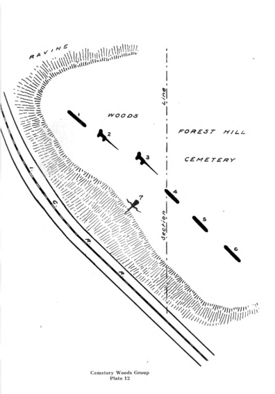 Forest Hill Cemetery Group.Photo Courtesy Wisconsin Society for Archaeology. 1915 map of the effigy mound group at Forest Hill Cemetery, by Charles E. Brown. Three of the linear mounds shown in this map were destroyed, as was the head of the goose mound.