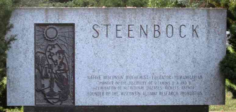 Harry Steenbock