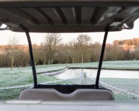 Frost through a Buggy