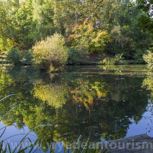Meadowcliffe Pond