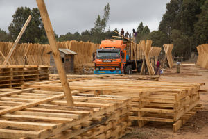 Timber loading in Tanzania