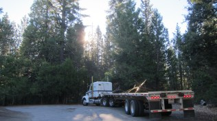 truck to transport trees