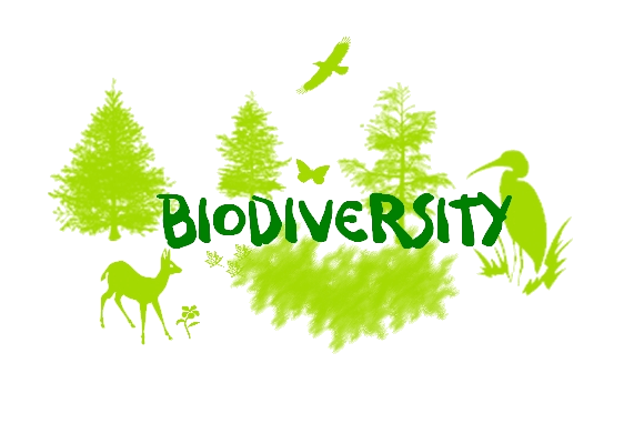 Biodiversity Significance & Types