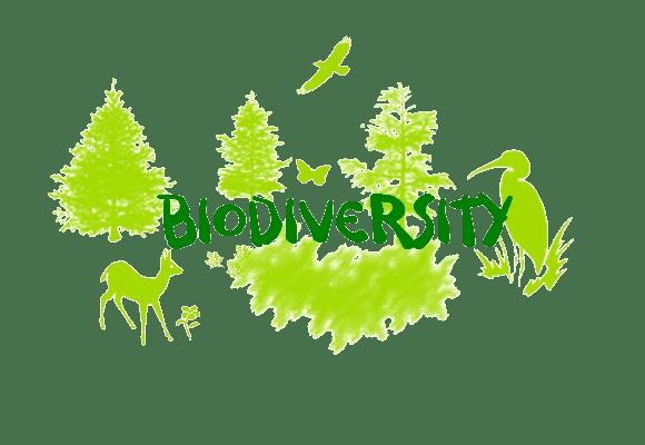 Biodiversity Significance & Types