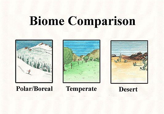 Biome - Lexicon of Forestry - LoF - Forestrypedia