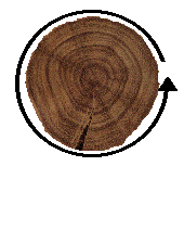 Circumference - Forestrypedia