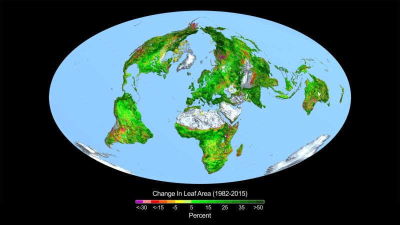The Benefits of Carbon Dioxide (CO2) - Forestrypedia