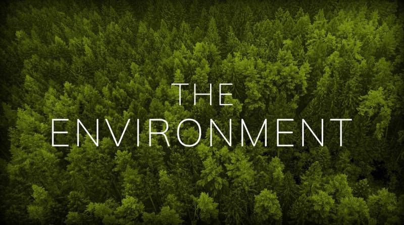 Environmental Factors or Ecological Factors (Forces) - Forestrypedia