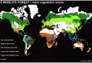 Forest Types of the World