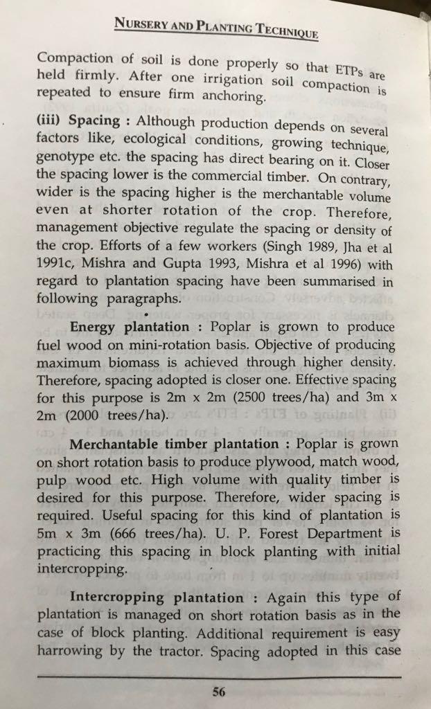 Poplar (Populus deltoides) raising and farming - Forestrypedia - Poplar (Populus deltoides)planting/farming