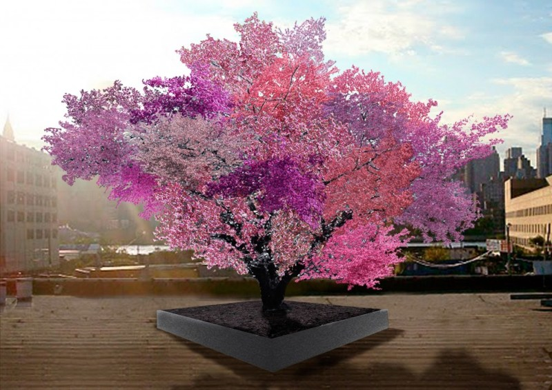 Tree with 40 Fruits