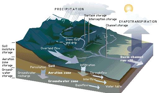 Runoff - Forestrypedia