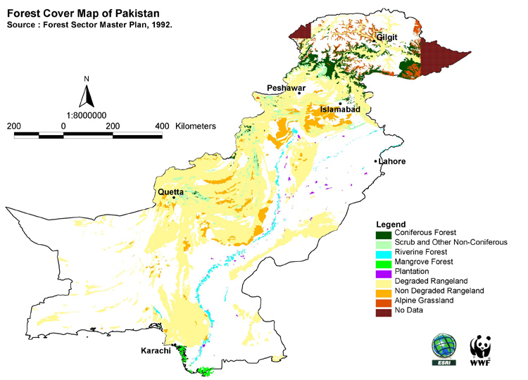 Classification of Forests and Forest Types of Pakistan (Detailed Note)