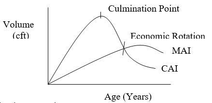 Economic Rotation - Forestrypedia
