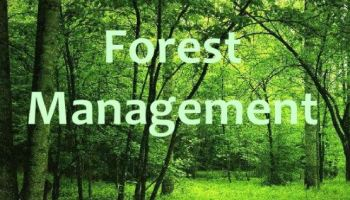 Introduction to Foreset Management and its Scope - Forestrypedia
