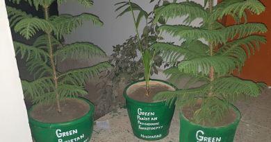 Methods of Planting - Green Pakistan Programme - Forestrypedia