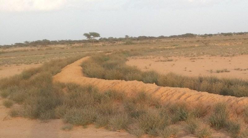 Range Policy - Forestrypeida