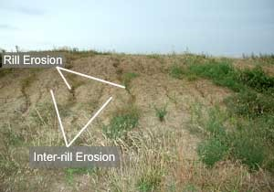 Rill Erosion - Forestrypedia
