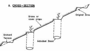 Soil Conservation - Hillside Ditches - Forestrypedia