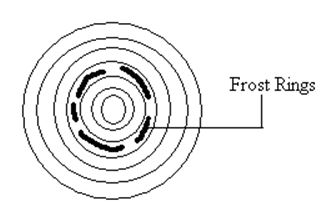 Frost Injuries - Wood Defects