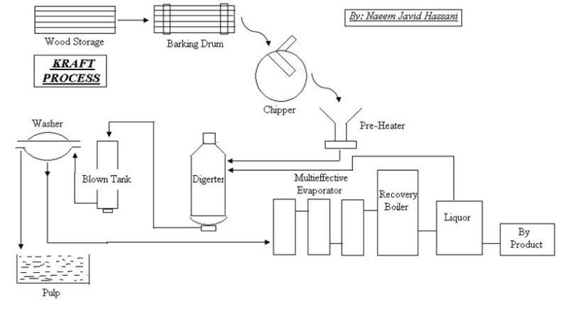 Pulp and Paper - Kraft Process1