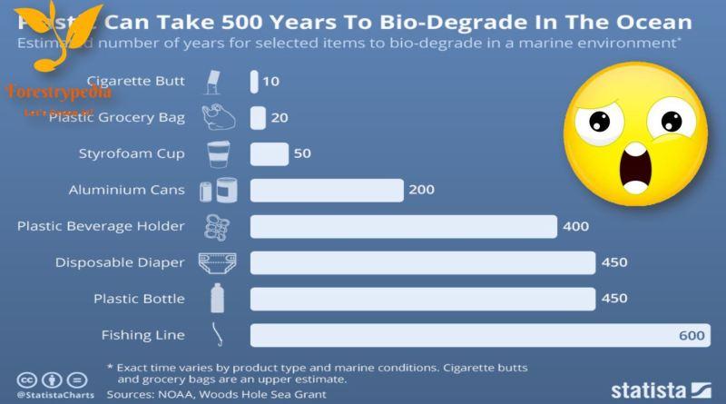 How Long Everyday Plastic Items Last in the Ocean? - Forestrypedia