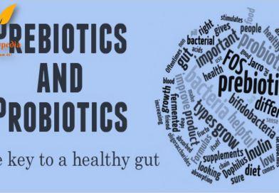 Prebiotics