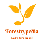 Forestrypedia
