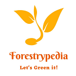 Forestrypedia