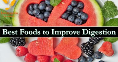 Best Foods to Improve Digestion - Forestrypedia