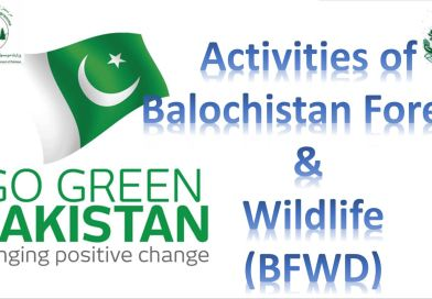Balochistan Forest & Wildlife Department Green Pakistan Program / Billion Tree Tsunami Program Events - Forestrypedia