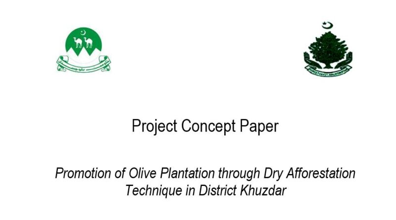 Promotion of Olive Plantation through Dry Afforestation Technique in District Khuzdar (Project Concept Paper) - Forestrypedia