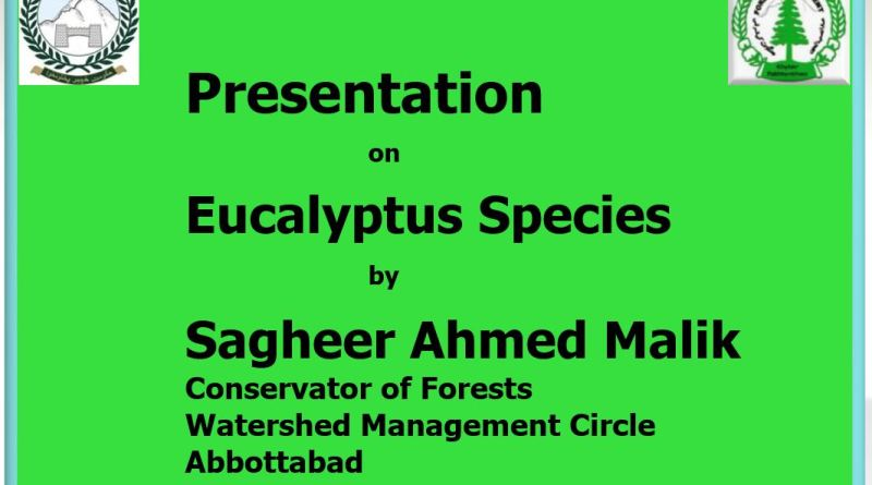 Presentation on Eucalyptus Species - Forestrypedia