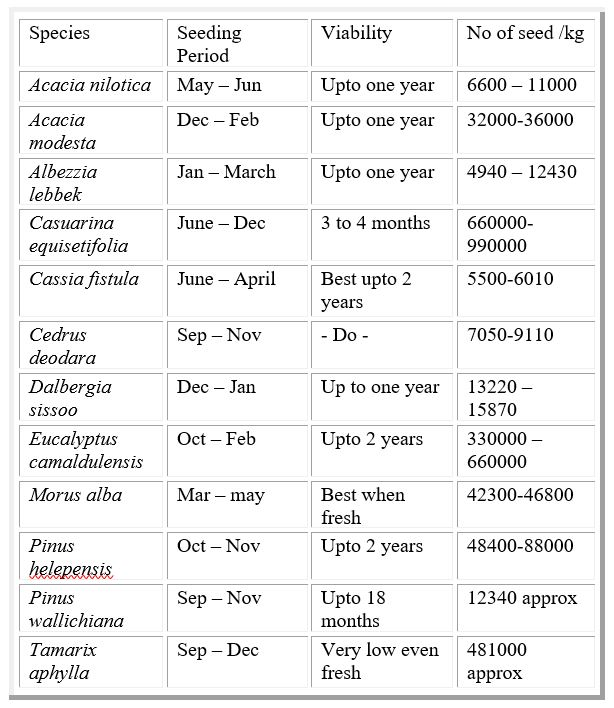 Seeding Period | Viability | No of Seeds Per Kg | Important Information about SEEDs of Forest Species - Forestrypedia