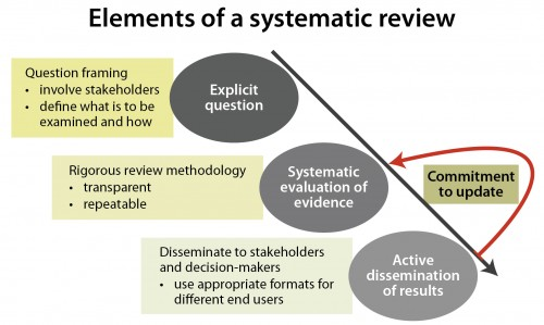Elements of a systematic review