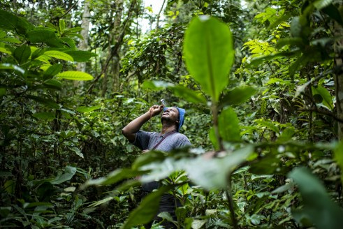 PhD student Prosper Sabongo measures the tree canopy in the billage of Masako, Kisangani, Democratic Republic of Congo. Ollivier Girard/CIFOR