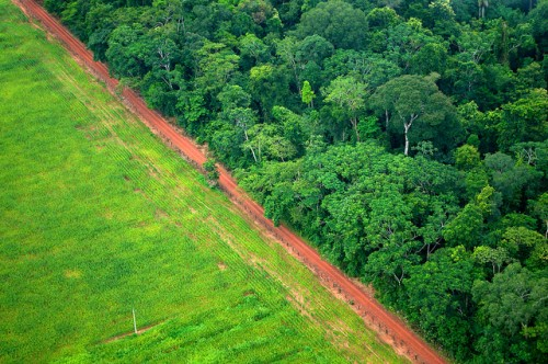 Debates over how to finance REDD+ -- the U.N.-backed framework for reducing emissions caused by deforestation and forest degradation -- and how to measure, report and verify (MRV) carbon emissions, have been major sticking points in climate change negotiations. CIFOR/Kate Evans