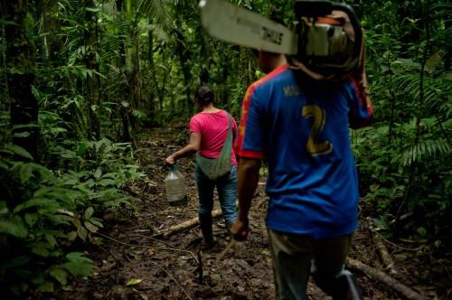 Maricela Tapuy ayuda su esposo a extraer madera y a talar el bosque con fines agropecuarios. Fotografía de Kate Evans/CIFOR