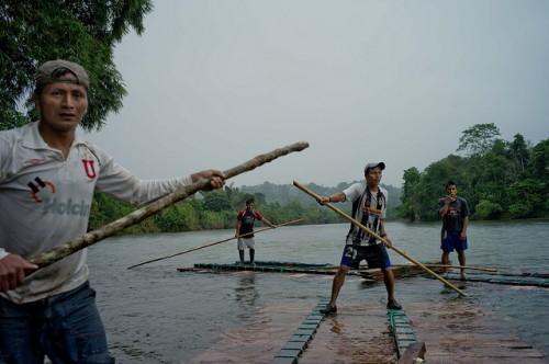 A madeira é uma parte importante das estratégias de sobrevivência dos pequenos produtores da Amazônia do Equador. CIFOR/Kate EvansKate Evans/CIFOR
