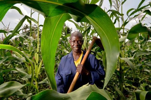 Agricultor en Kisumu, Kenya. Fotografía cortesía de Neil Palmer (CIAT).