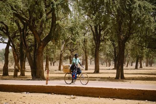 Los formuladores de políticas están desarrollando un marco para asegurar que los esfuerzos para la conservación de los bosques no afecten adversamente a las comunidades locales con derecho a recibir incentivos de ayuda por parte de los países desarrollados, al demostrar que han reducido las emisiones de carbono. Fotografía de CIFOR/Ollivier Girard