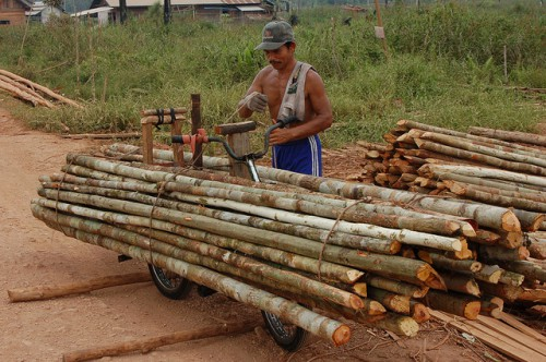 Troncos listos para su procesamiento, Lago Sentarum, Kalimantan Occidental, Indonesia. Algunos conservacionistas proponen ahora combinar áreas protegidas con concesiones madereras para sostener paisajes forestales más grandes de lo que es posible tan solo mediante áreas protegidas. Foto: Tim Cronin/CIFOR.