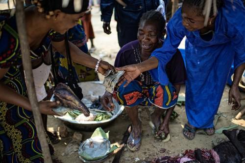 Les femmes vendent la viande de brousse au marché à Lukolela, en République démocratique du Congo. La viande de brousse représente entre 30 et 80 pour cent de l'apport de protéines des personnes en Afrique centrale, la recherche du CIFOR a trouvé. Ollivier Girard/CIFOR photo