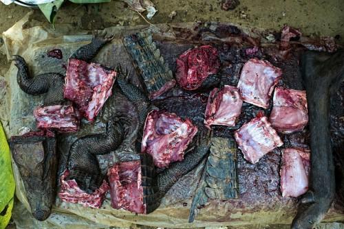 Carne de monte —en este caso, de cocodrilo y antílope— a la venta en el mercado Moutuka Nunene en Lukolela, República Democrática del Congo. Se sabe relativamente poco acerca de los riesgos de propagación del virus del ébola que están relacionados con las prácticas agrícolas o las cadenas de valor de la carne de monte. Fotografía de Ollivier Girard / CIFOR./CIFOR photo