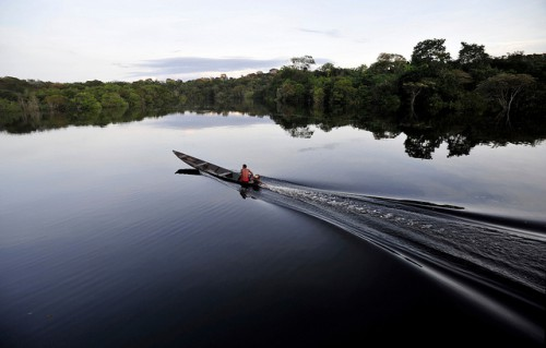 La deforestación en los países de bosques tropicales está en gran medida ausente de los debates, señala un nuevo estudio. Fotografía de Neil Palmer / CIFOR.