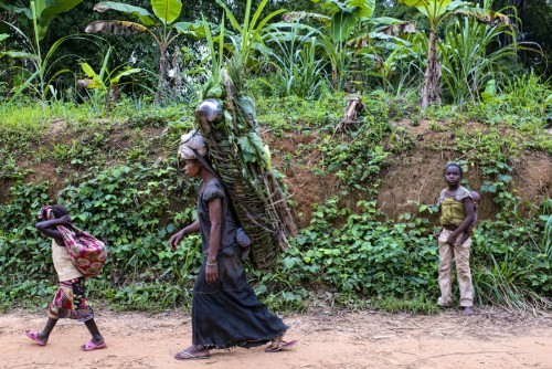 On the way from the Reserve_Village of Masako to Kinsagani, Democratic Republic of Congo.