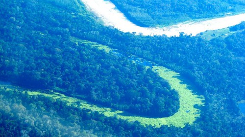 A medida que la COP de París se acerca, es momento para analizar temas claves para los bosques y el sector de uso de la tierra. Foto cortesía de Mariusz Kluzniak, Creative Commons
