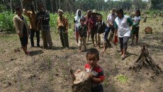 Indonesia not ready to bury REDD+